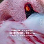 """""""Sintiencia y Nueva ConstituciónChilena"""" ¿Qué dice la ciencia y el derecho?"""